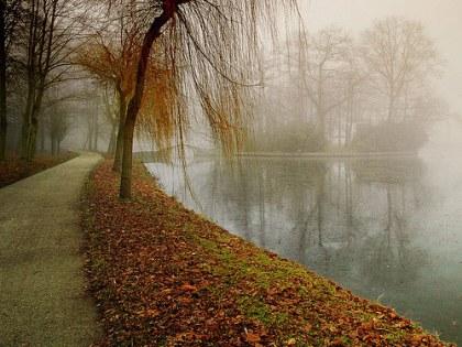 road by lake
