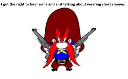 yosime bear arms